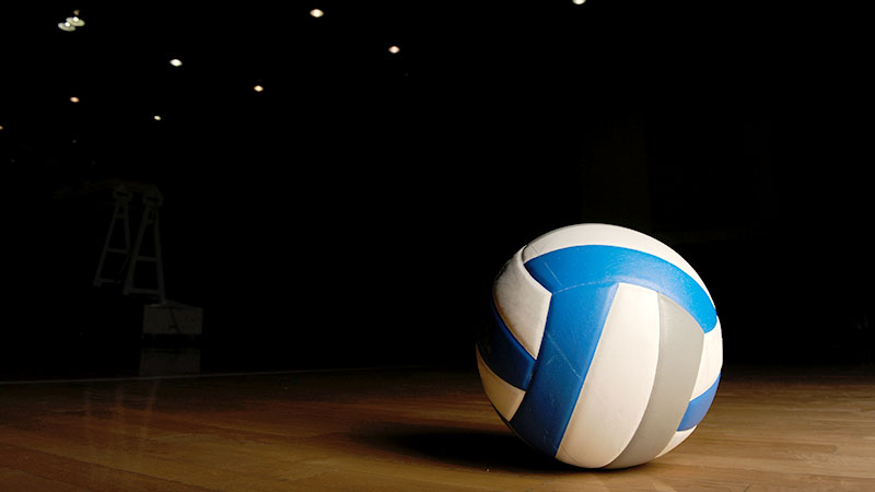 how to tell if this is a volleyball